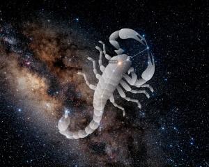 scorpius_01